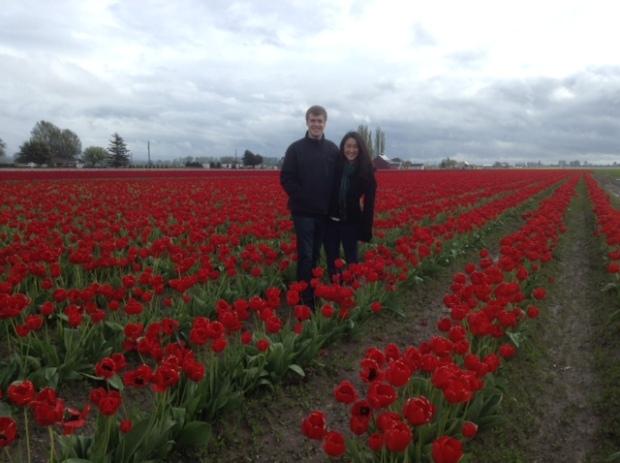 Mount Vernon Tulip Fields