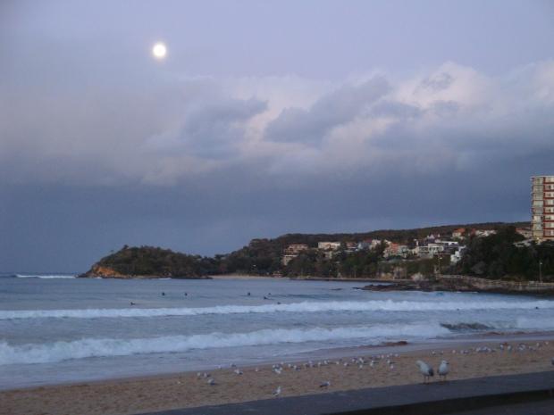 Shelly Beach at Night