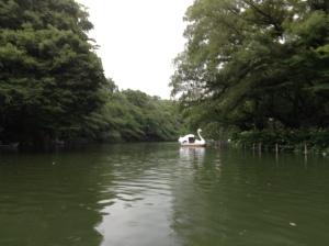 inokashira park tokyo